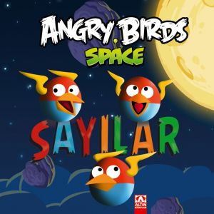 ANGRY BIRDS SPACE SAYILAR
